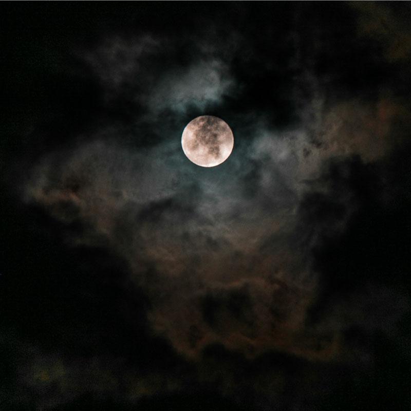 of-the-dark-moon-image